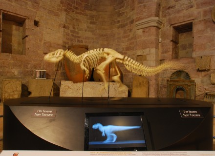 "Mostra ""Dinosauri"" - Gubbio"